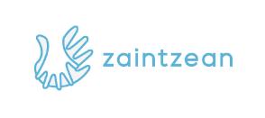 logo zaintzean